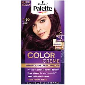 Tinte para cabello Palette 4-90 °